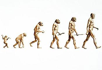 monkey to man